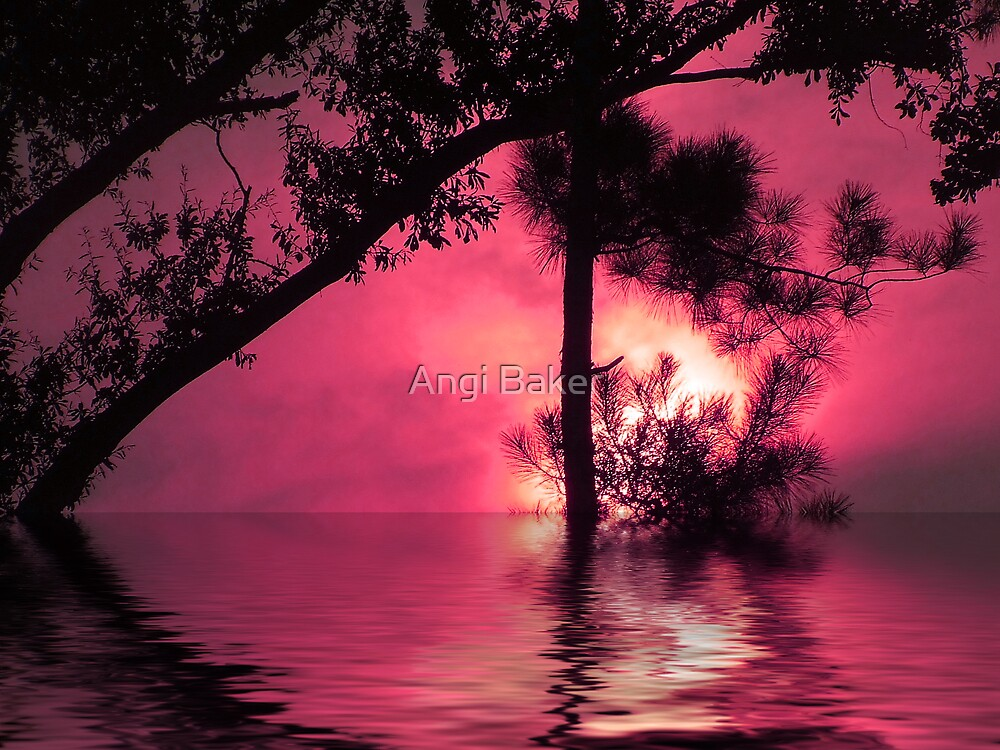 Don't Let The Sun Go Down On Me by Angi Baker