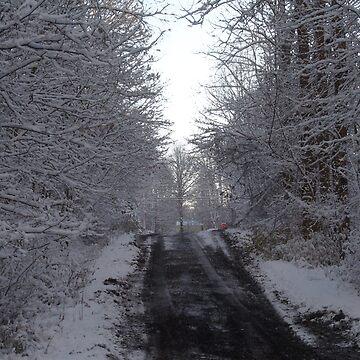 snowyincline by swiftwon