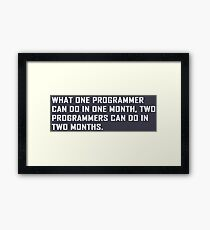 What one programmer can do in one month Framed Print