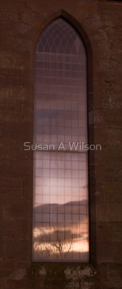 The Trilogy (i) by Susan A Wilson