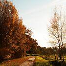 Autumn by Anteia