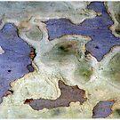 Bark Sea by Marguerite Foxon