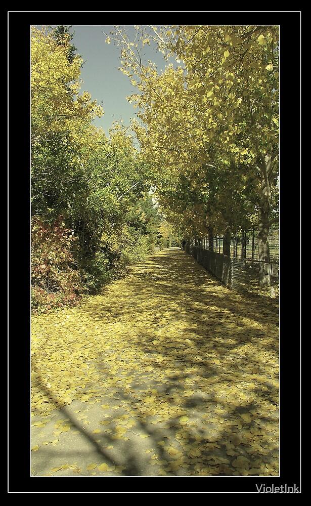 Beaten Path. by VioletInk