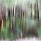 Forest abstract ... by Angelika  Vogel