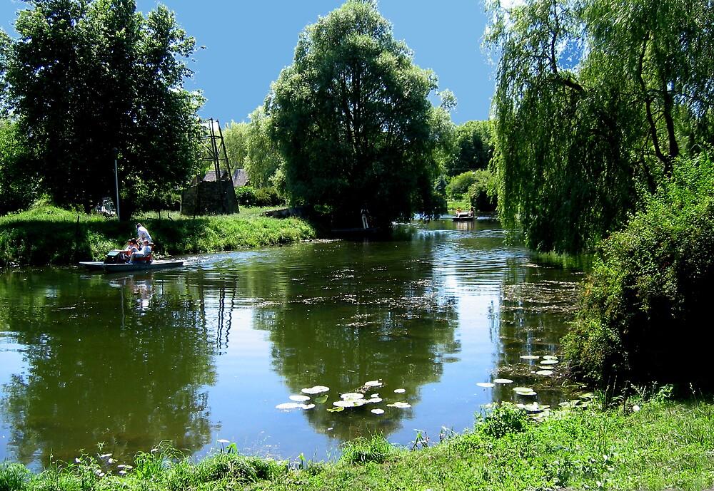 Pond in the park by TarasKokovsky