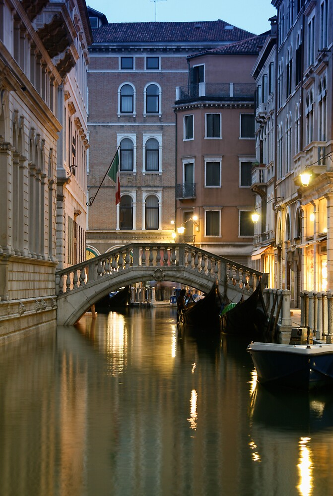 Beauty of Venice - Venice at night by almeshal