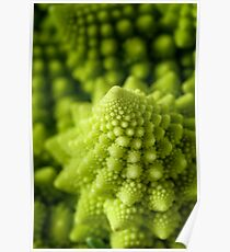 Romanesco broccoli Poster