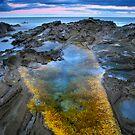 Rock Pool by Alex Stojan
