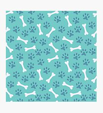 Animal seamless vector pattern of paw footprint and bone Photographic Print