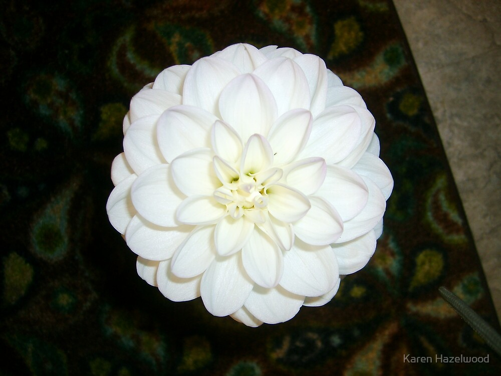 The Perfect Flower by Karen Hazelwood