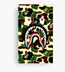 shark green Canvas Print