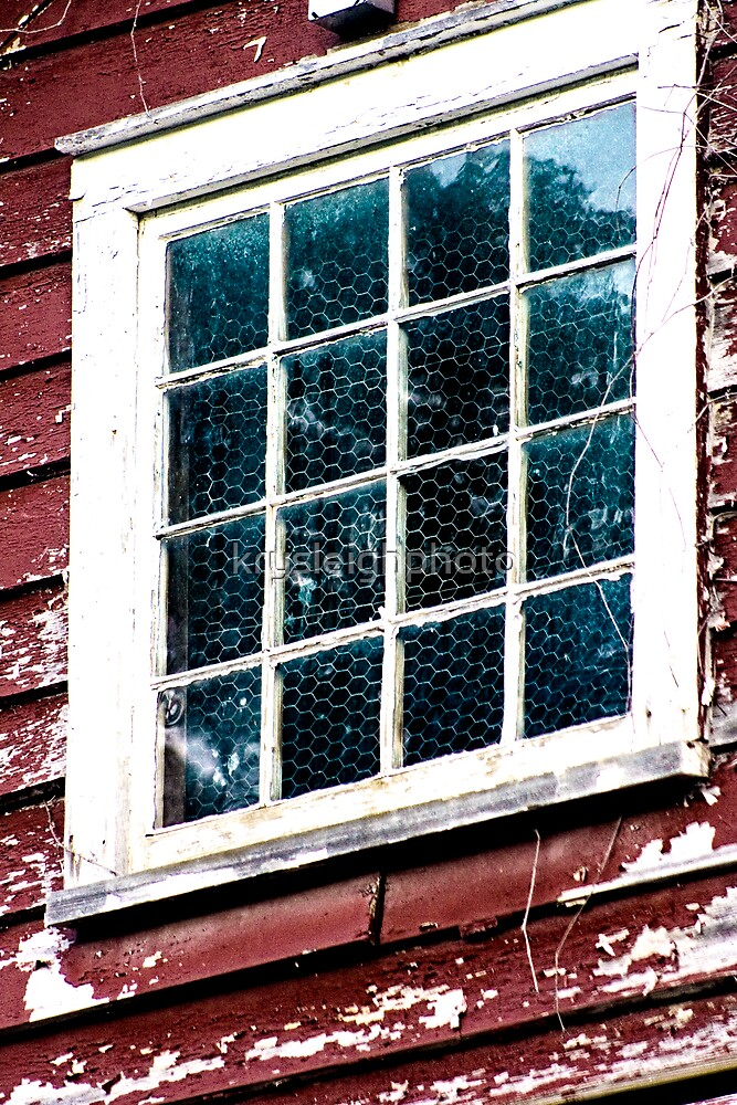 The Window by krysleighphoto