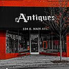 The Antiques Store by Rodney Lee Williams