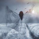 Field of Dreams by CarolM