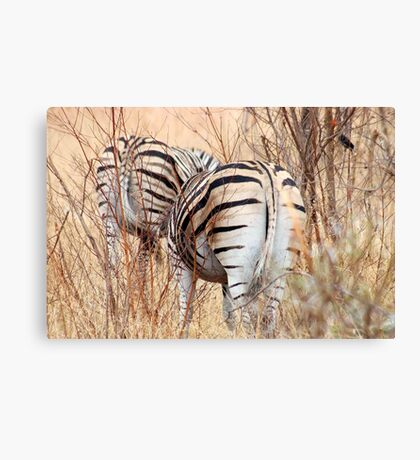 "BURCHILLS ZEBRA  ""SETS OF TWO"" Canvas Print"