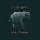 I Remember Everything by Conundrum Arts