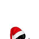 Christmas Cat with Santa Hat by ibjennyjenny
