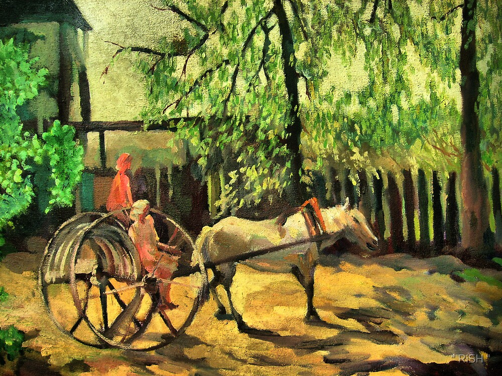 """The cart by """" RiSH """""""