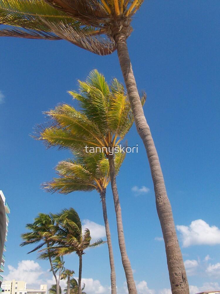 dancing palms  by tannyskori