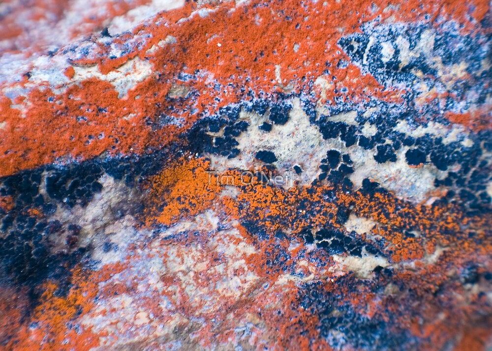 Rock Art 1 by Tim O'Neil