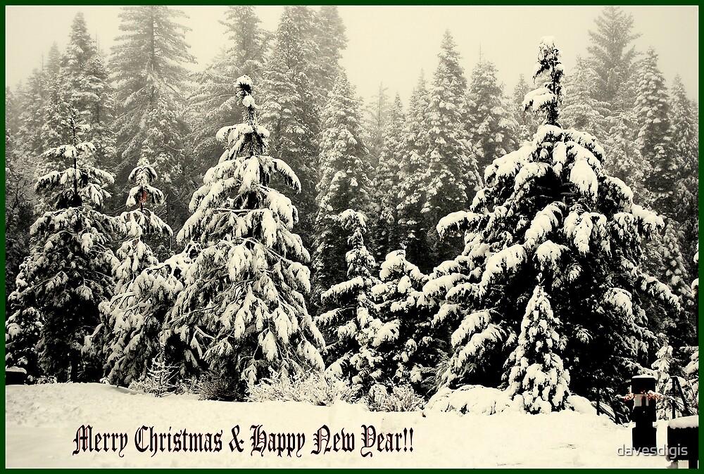 Merry Christmas & Happy New Year by davesdigis