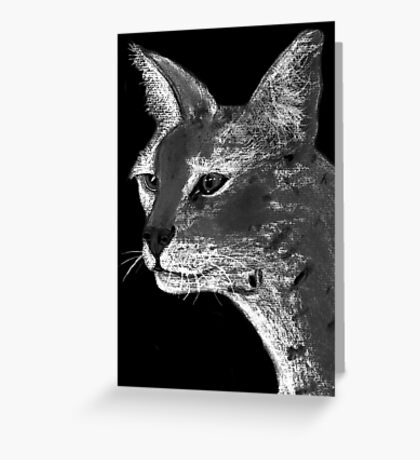 Stare Down B/W Greeting Card