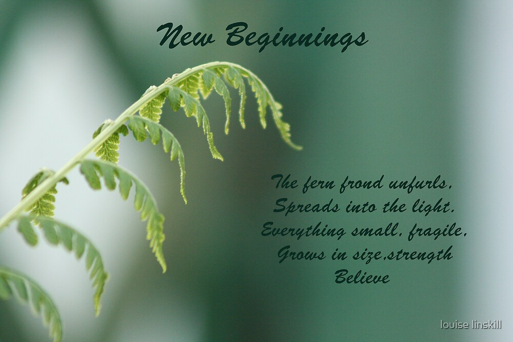 new beginnings by louise linskill
