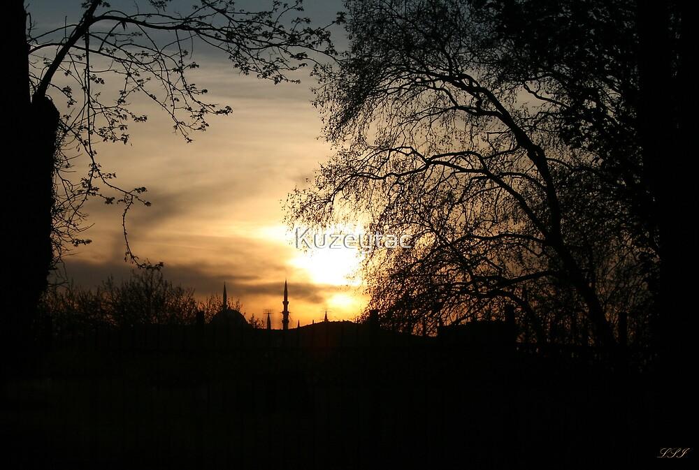 Golden Sunset by Kuzeytac