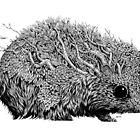 Leaf Hedgehog by Brett Miley