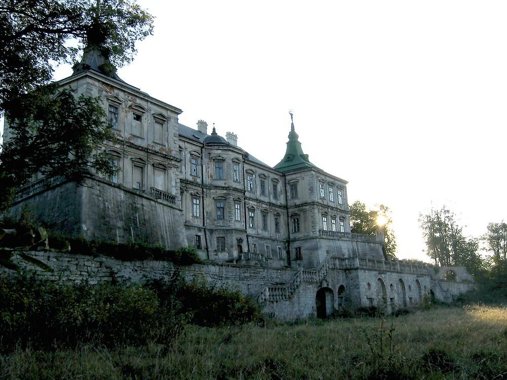 Old castle... by TarasKokovsky