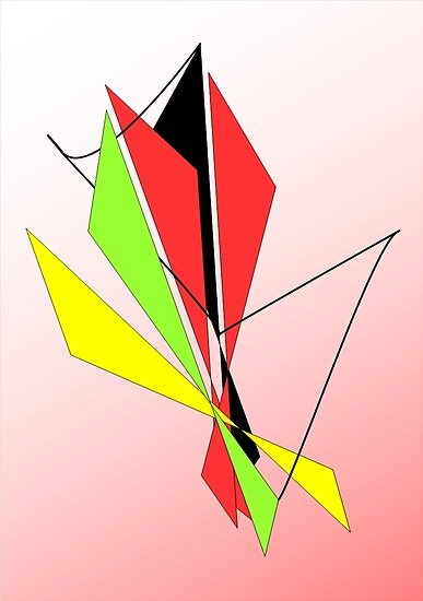 kite fight by Barry Napper
