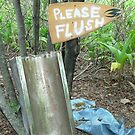 Please Flush   by outsider