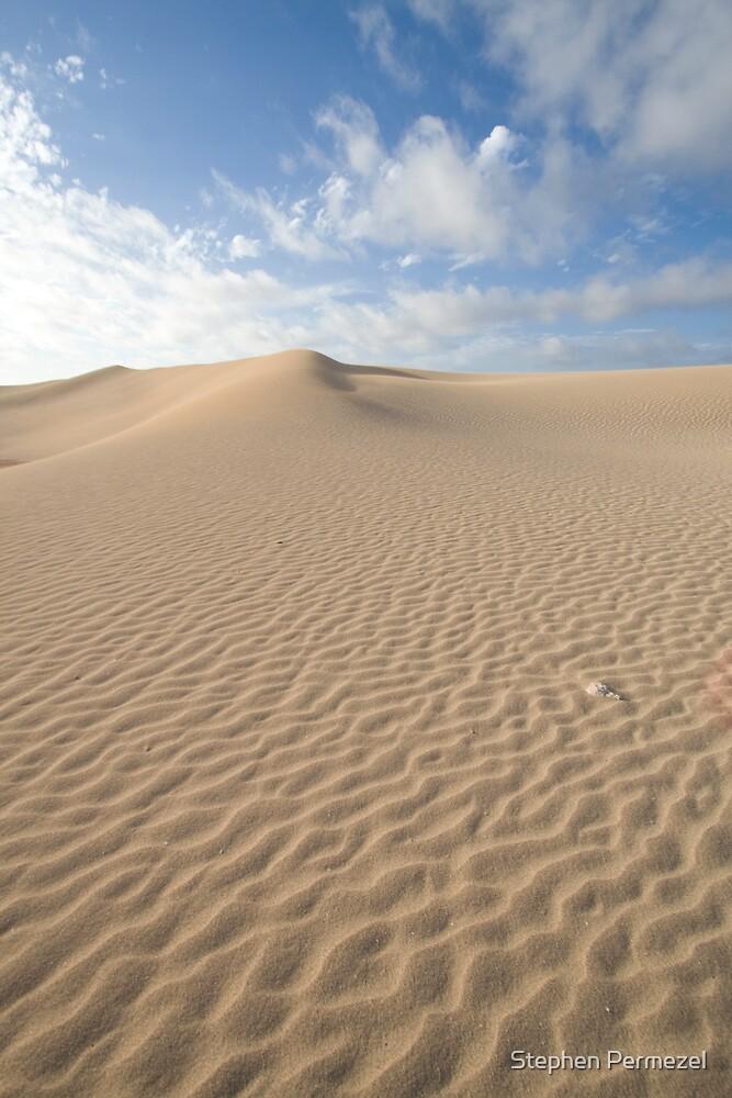 Sand Dune - South Australia by Stephen Permezel