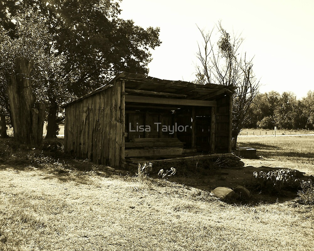 Storage Space of Yesteryear by Lisa Taylor