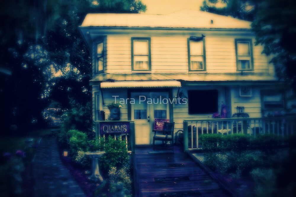 Charms of Leffingwell Antique Store cp by Tara Paulovits