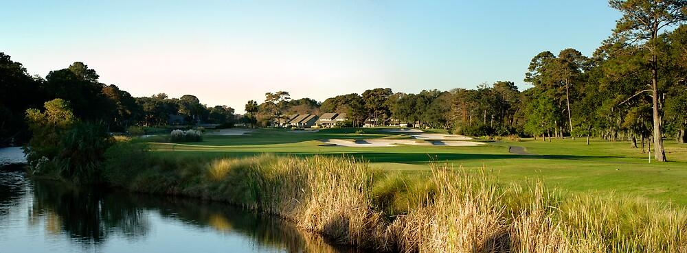 Hilton Head Golf Course by dbschanck