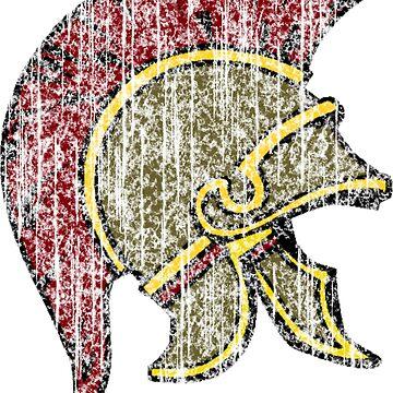 Trojan Helmet by Sportswear