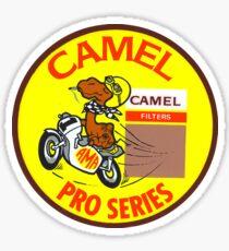 Camel racing Sticker