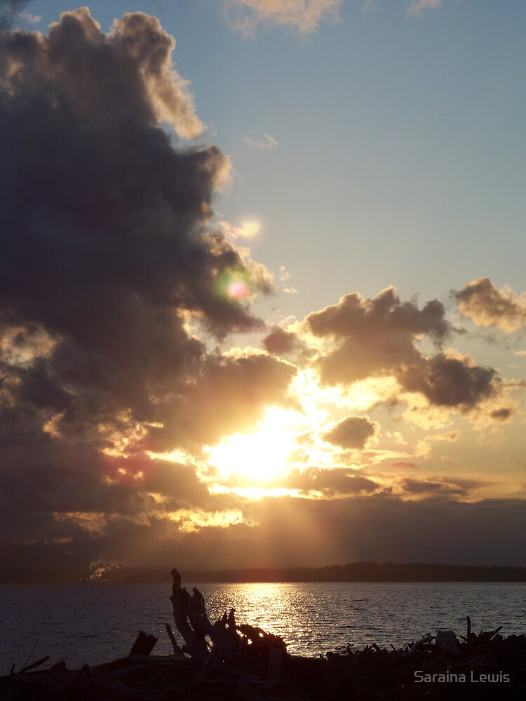Whidbey Island by Saraina Williams