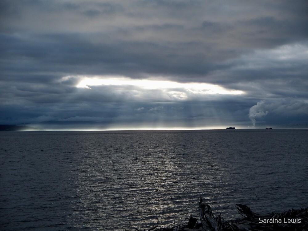Heaven's View by Saraina Williams