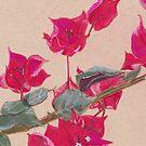 Bougainvillea Floral Design by PixelGum