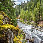 USA. Oregon. Rogue Gorge. River. by vadim19