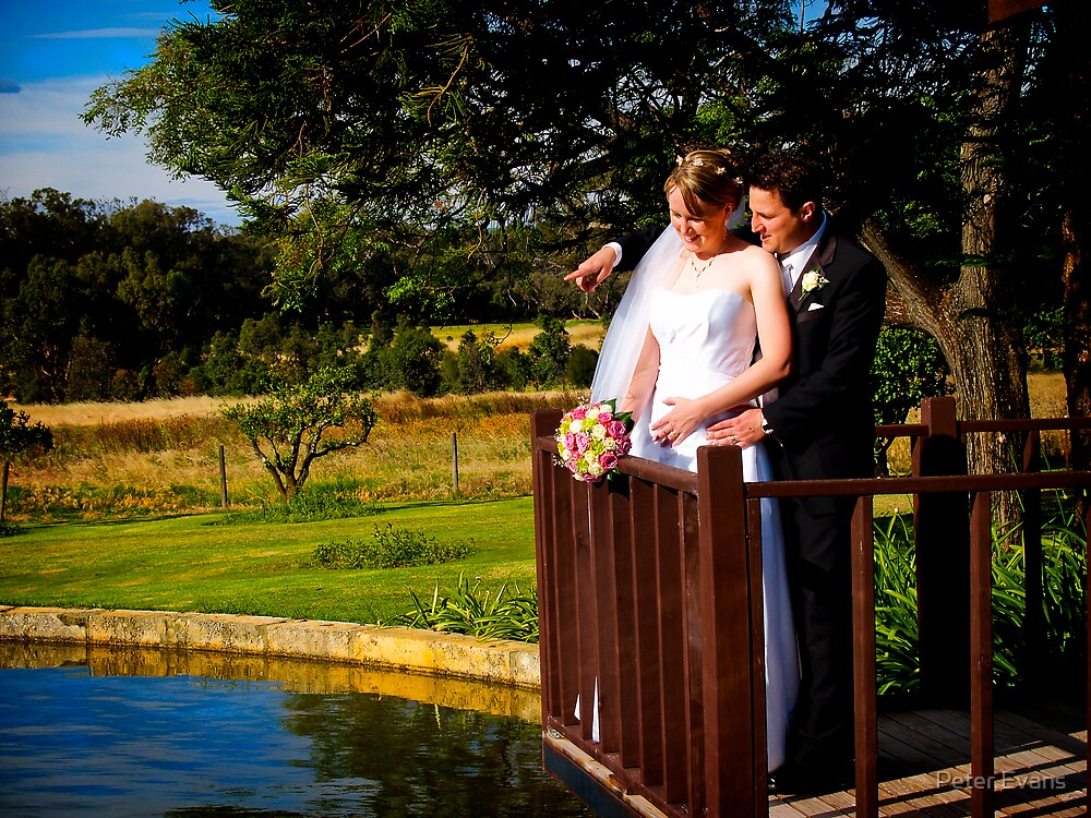 Bride and Groom on Pond by Peter Evans