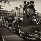 Railway engine. by Francisco Larrea