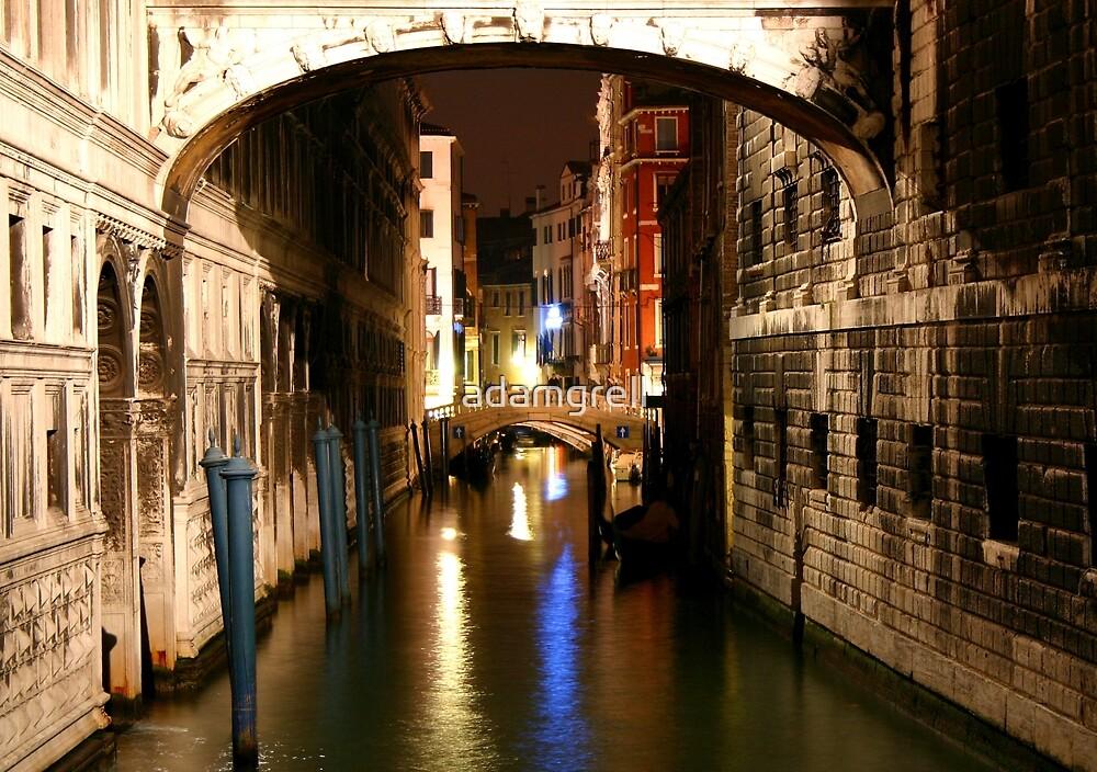 Venice by adamgrell