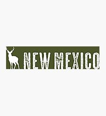 Deer: New Mexico Photographic Print