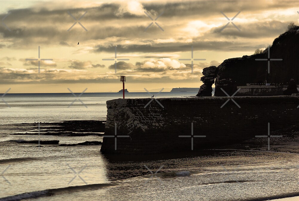 Boat Cove Jetty by Catherine Hamilton-Veal  ©