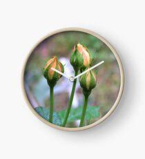 Toolangi Rose buds Clock