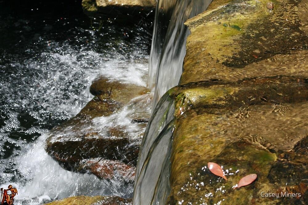 splatter on the rocks by Casey Miners