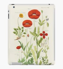 Botanical illustration: Poppy by David Dietrich – State Library Victoria iPad Case/Skin